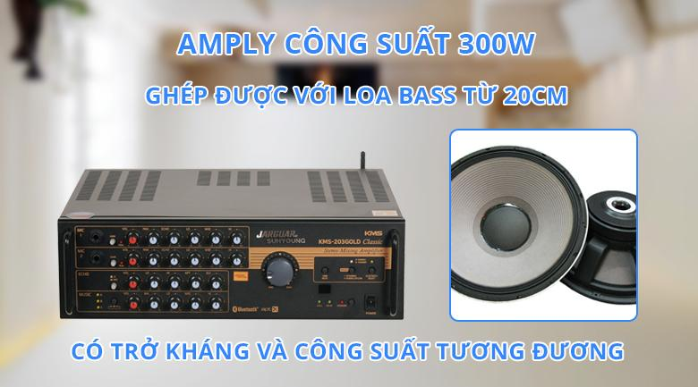 Amply Jarguar Suhyoung KMS-203 Gold Classic | Công suất 300W
