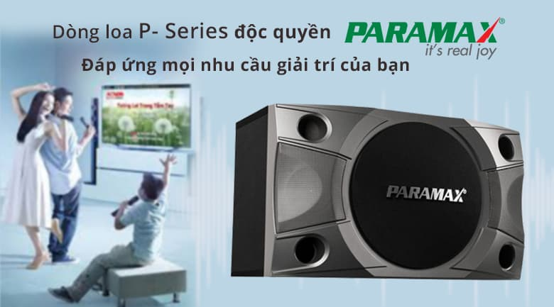 Loa paramax P800 | Dòng loa độc quyền của Paramax