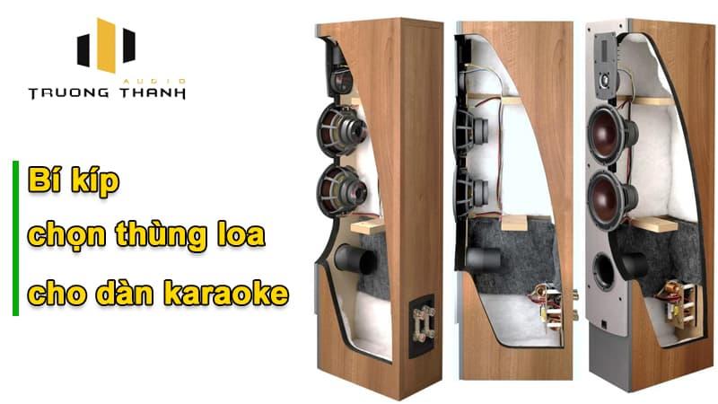 Bí kíp chọn thùng loa cho dàn karaoke gia đình hay nhất