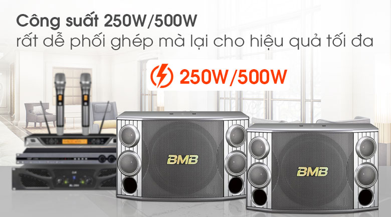 Loa BMB CSX 850 ảnh tính năng 3