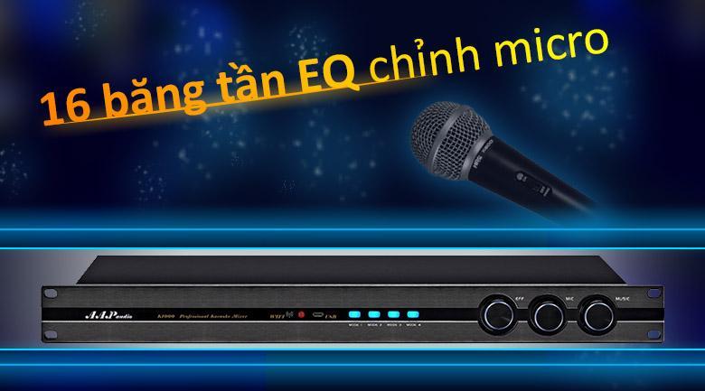 vang số AAP HNS 9999   16 băng tần EQ chỉnh micro